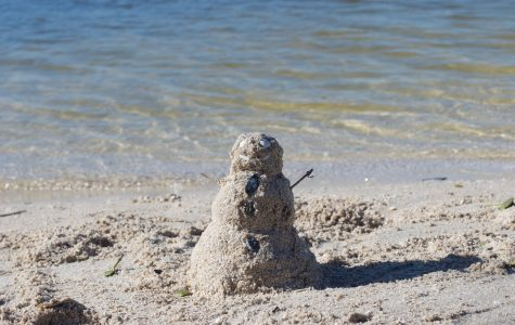 Surviving the not-so-snowy season