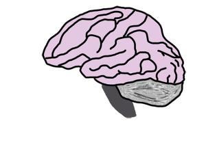 Wrap your mind around mental health