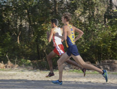 Running for a dynasty: Trinity Prep cross country finishes top three at state meet